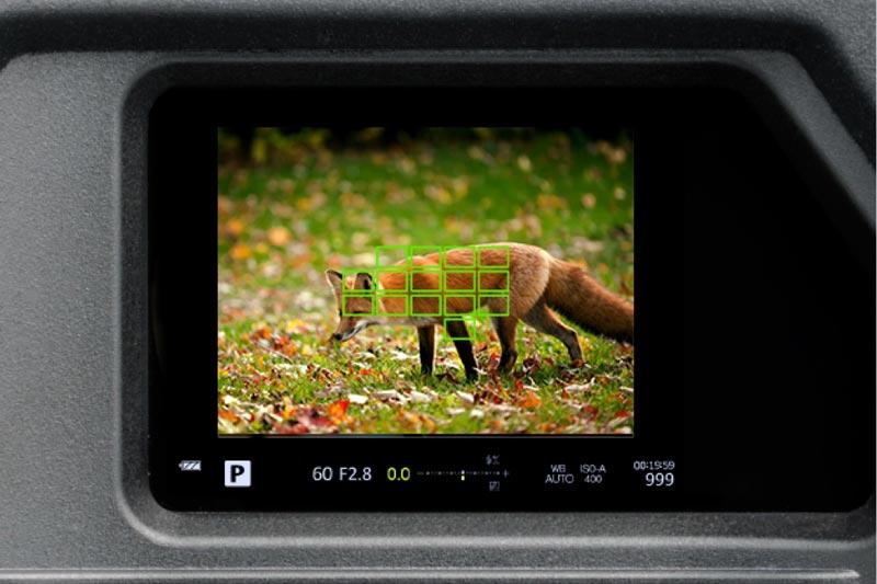 Image of OMD EM1 MK II viewfinder